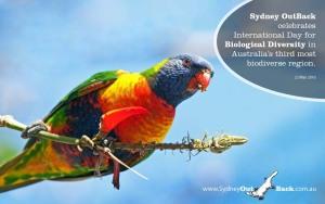 BiodiversityDay 2016